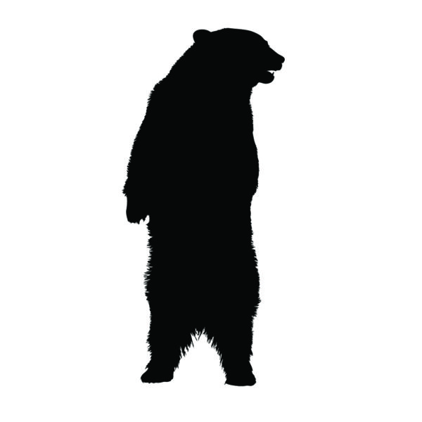 Bear Standing Silhouette Stencil