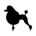 Poodle Stencil
