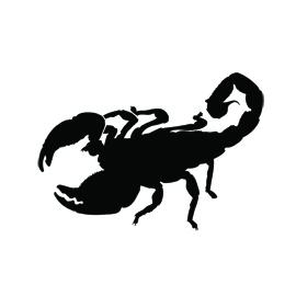 Scorpion Silhouette Stencil