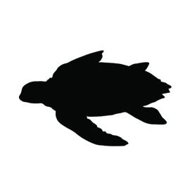 Sea Turtle Silhouette Stencil