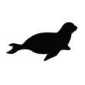 Seal Silhouette Stencil