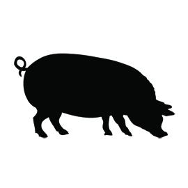 Pig Silhouette Stencil