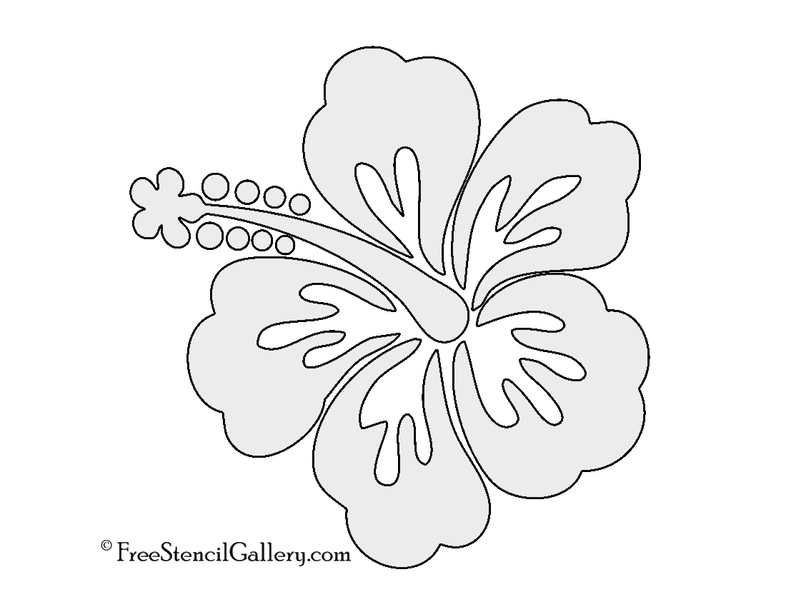 picture about Printable Flowers Stencils named Hibiscus Flower Stencil Free of charge Stencil Gallery