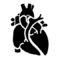 Anatomical Heart Stencil