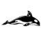 Killer Whale Stencil