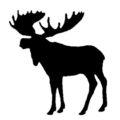Moose Silhouette Stencil