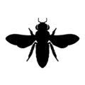 Bee Silhouette 02 Stencil