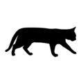 Cat Silhouette Stencil