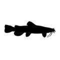 Catfish Silhouette Stencil