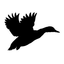 Duck Silhouette Stencil