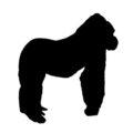 Gorilla Silhouette Stencil