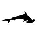 Hammerhead Shark Silhouette Stencil