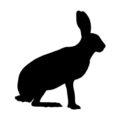 Hare Silhouette Stencil