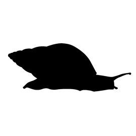 Snail Silhouette Stencil