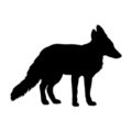 Red Fox Silhouette Stencil