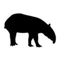 Tapir Silhouette Stencil