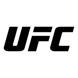 UFC Logo Stencil