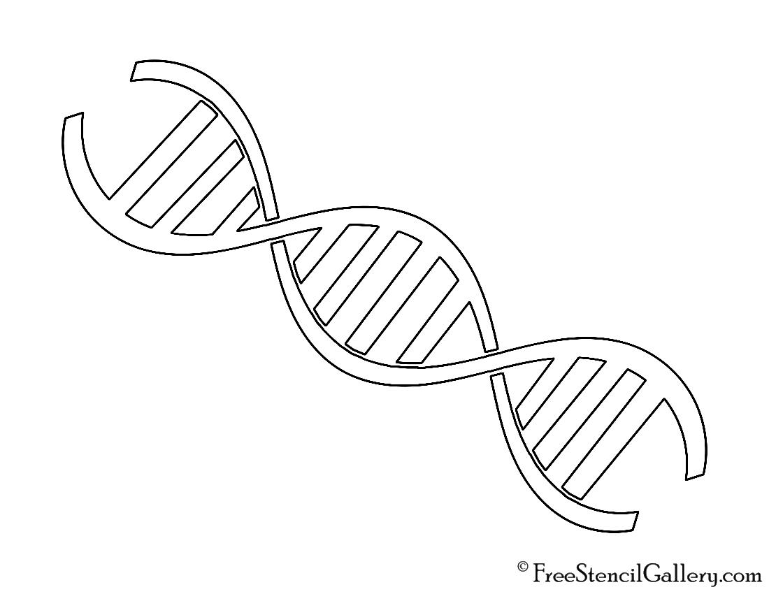 DNA Stencil