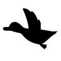 Duck Hunt Symbol Stencil