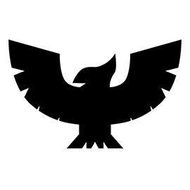 F-Zero Falcon Symbol Stencil